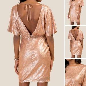 Francesca's Sequin Sheath Dress